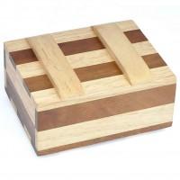 Leonardo's Mind Puzzles: Zebra Trickbox