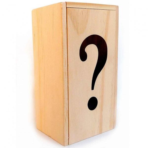 Leonardo's Mind Puzzles: Fragezeichen-Box