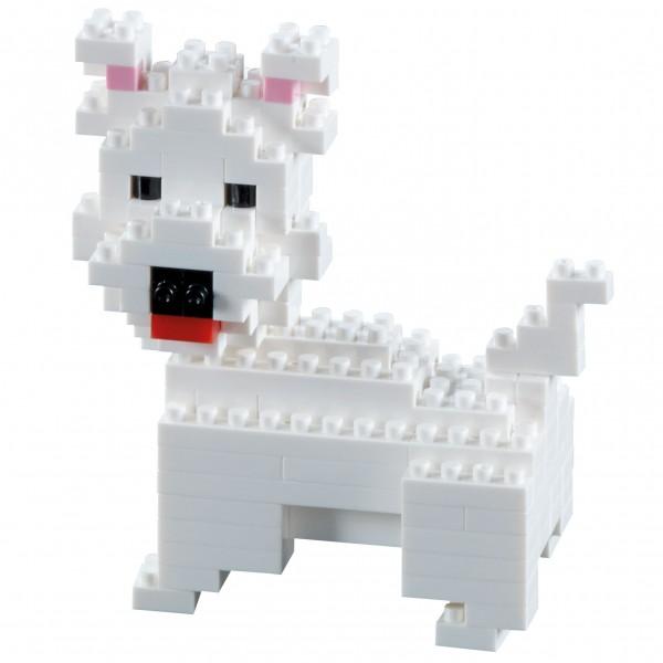 Brixies Hund