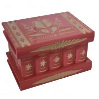 Transylvany Secret Box M Pink