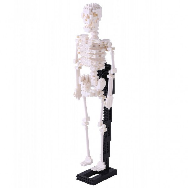 Nanoblock: Menschliches Skelett