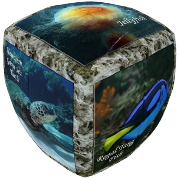 V-Cube 2 Essential - Meereswelt