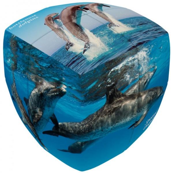 V-Cube 2 Essential - Delfine